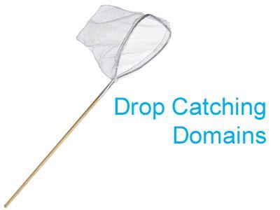 drop-catching